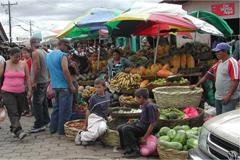 stedenband-delft-esteli-markt-esteli_240x160