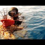 Informatieavond Nicaragua met film 'My village my lobster'
